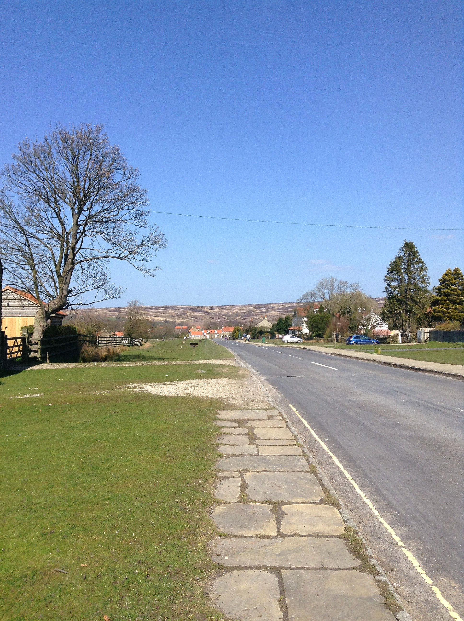 view of moors from goathland town in the north york moors national park