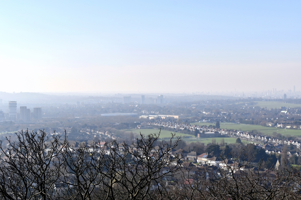 misty day view of southeast london from severndroog castle over trees