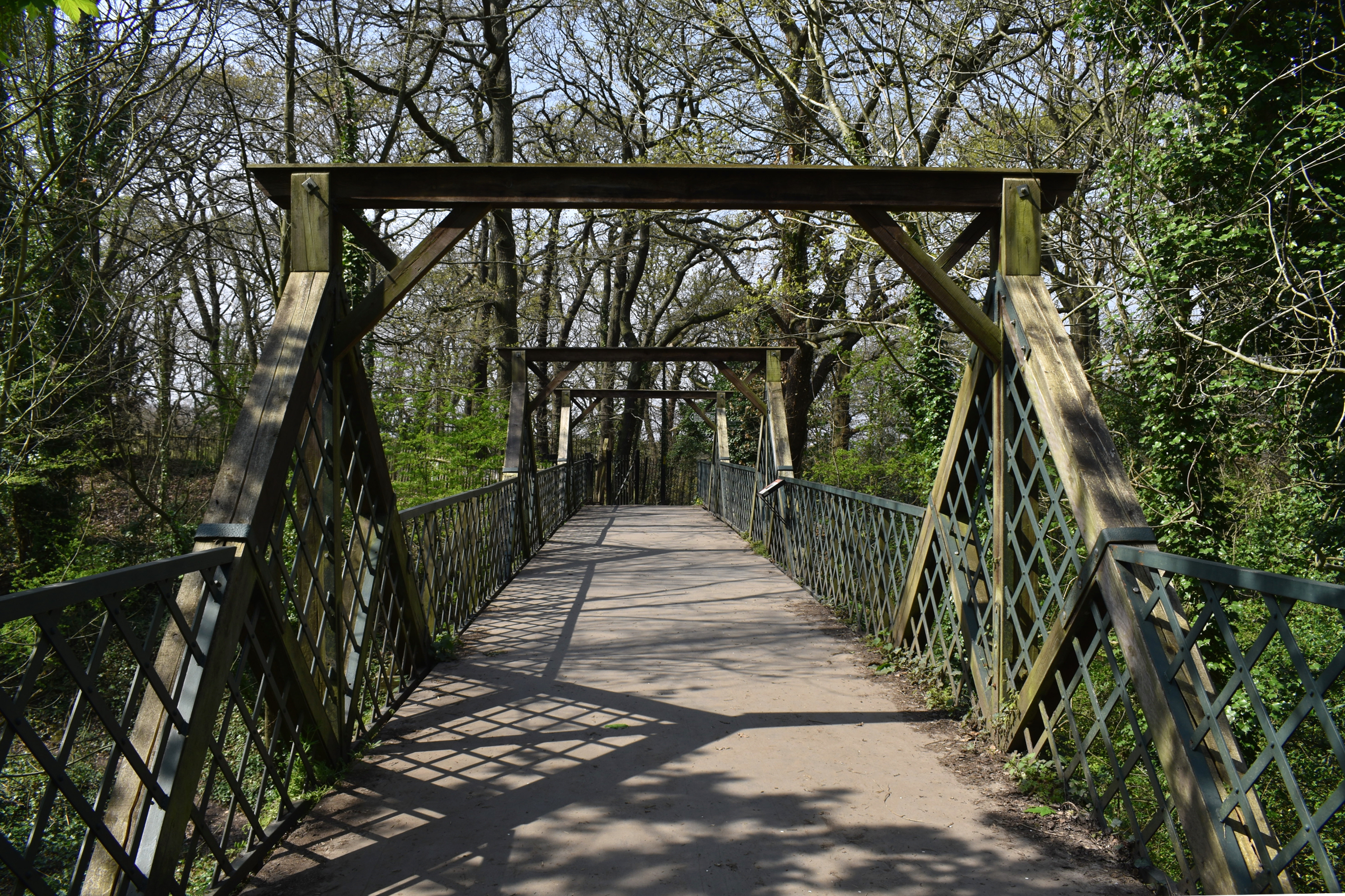 bridge across woodland with trees surrounding and shadows