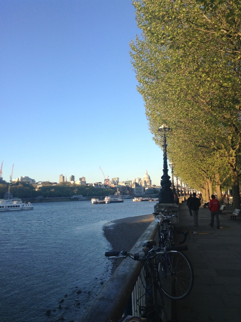view over a river on sunny evening towards cathedral in distance and trees in foreground